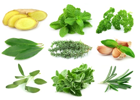 rood: Collage of green and juice spice on white background