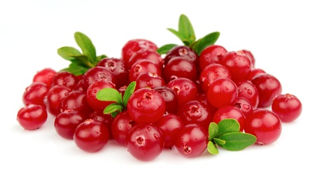 cranberry fruit: fresh cranberries on a white background  Stock Photo