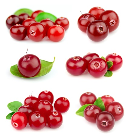 cranberries: Collage from cranberry on a white background close up