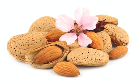 almonds: Nuts of almonds and almonds flowers