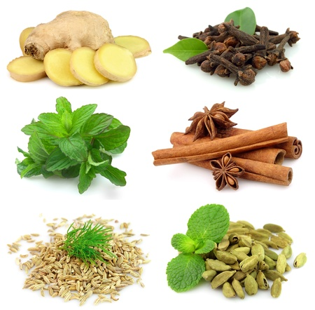 fragrant: Collecton of fragrant spices on white Stock Photo