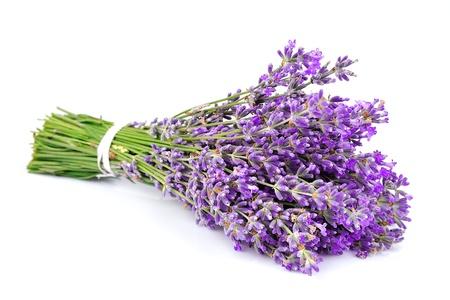 白い背景にラベンダーの香りの花束 写真素材