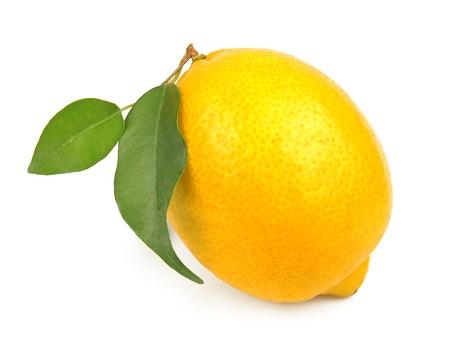 白の葉を持つ単一の甘いレモン フルーツ 写真素材