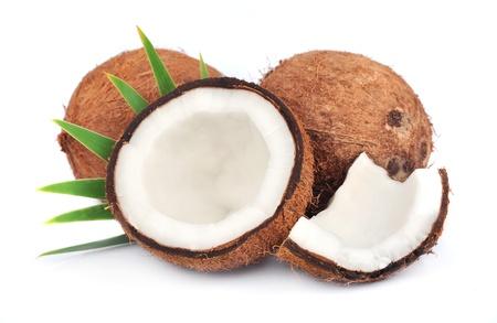 白地に葉とココナッツ