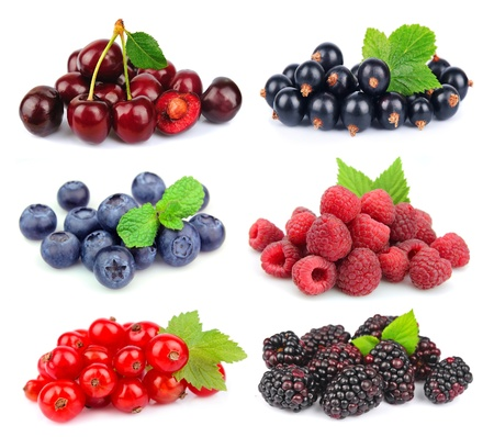 brambleberry: Sweet berries   blackberry,blueberr y,red currant,raspberry,black currant,cherry