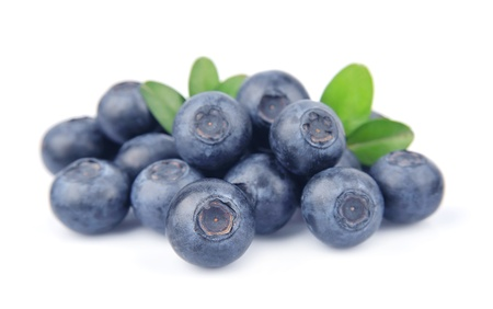 bilberries: Blueberries with leaves on white background