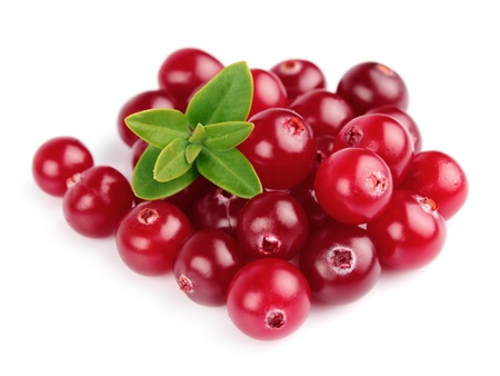 cranberries: Sweet cranberries with leafs close up on white