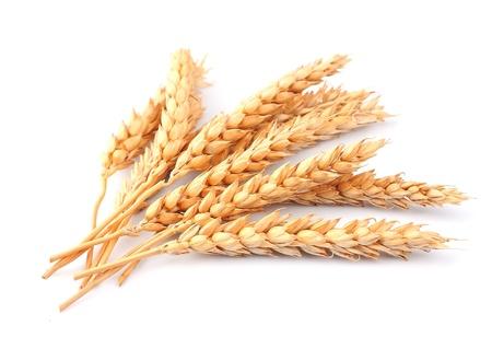 小麦を白い閉じるときに分離