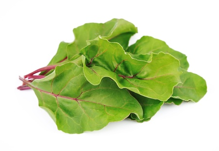 Sweet beet leafs mangold  on white  photo