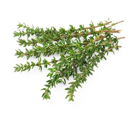 savoury: Тимьян свежий трава на белом фоне