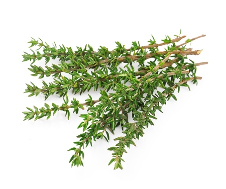 rosemary: Thyme fresh herb isolated on white background
