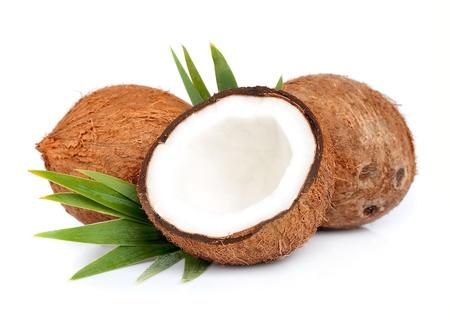 白い背景の上の葉とココナッツ 写真素材