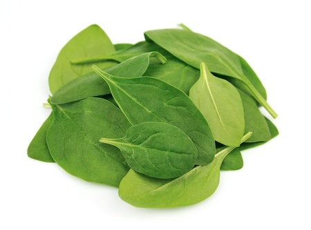 spinach salad: Young spinach on white close up