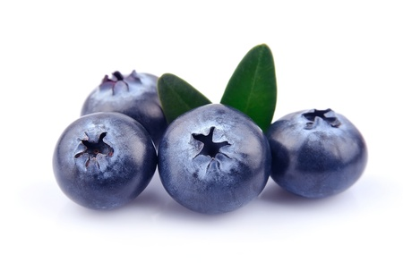 Blueberries with leaves on white background  Stock Photo - 19550451