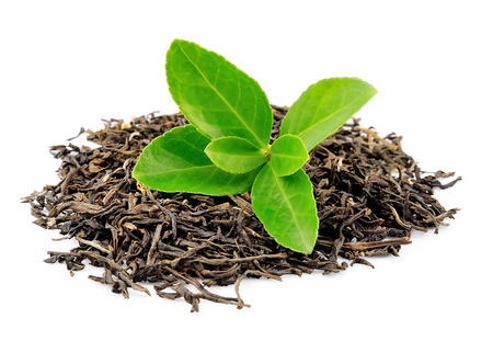 tea crop: Tea leaves on a white background