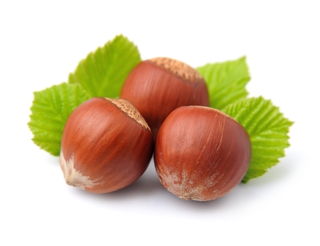 filbert: Filbert nuts with leaf on white background Stock Photo