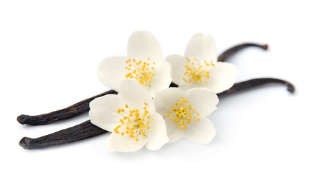 spicy cooking: Vanilla sticks with flowers on white backgrounds.