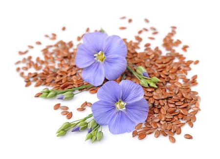 Las semillas de lino con flores de cerca en blanco. Foto de archivo