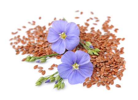 Flax seeds with flowers close up on white.