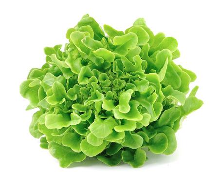 Sla op een witte achtergrond .Salad bladeren
