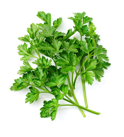 Parsley herbs close up on white Stok Fotoğraf - 52234680