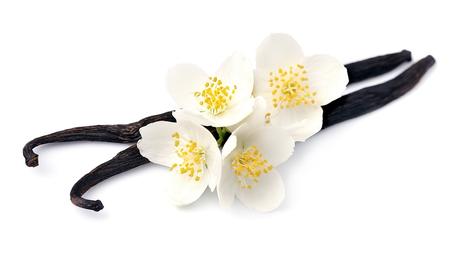 Vanille stokjes met witte bloemen op witte achtergronden.