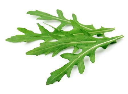 Arugula leaves isolated on white