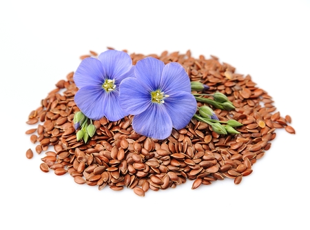 flax seeds: Flax seeds with flowers close up on white.