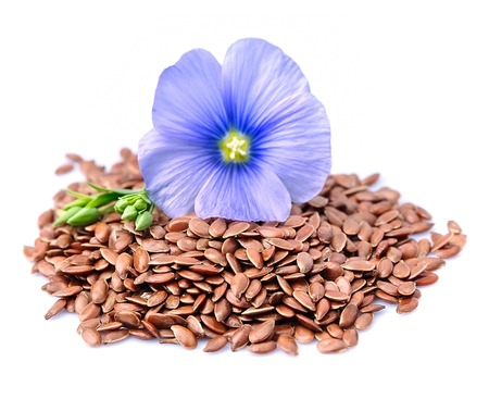semen: Flax seeds with flowers close up on white