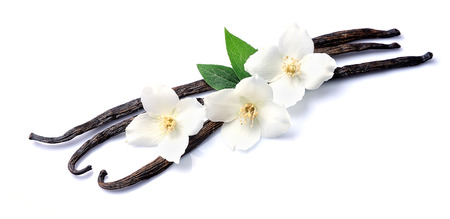 white flowers: Vanilla sticks with white flowers on white backgrounds. Stock Photo
