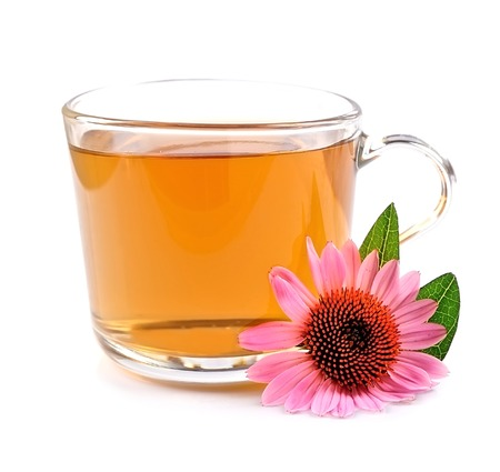 Cup of echinacea tea isolated on white backgrounds