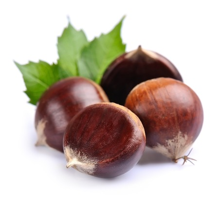 Chestnuts with leafs isolated on white