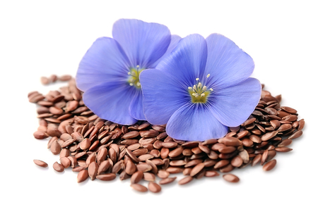 Flax seed and blue flowers closeup backgrounds.