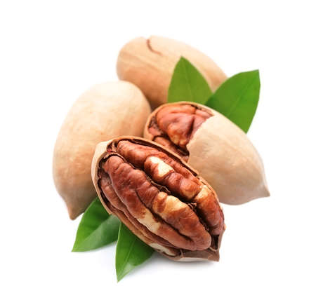 Pecan nuts with leaves on white backgrounds.