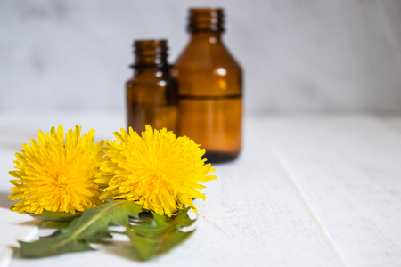 Bottle of essential oil with dandelion flowers in the foreground. Flower essential oil. Phytotherapy.