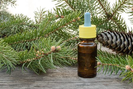 Essential coniferous oil in a dark bottle, a bottle of extract, pine branches, green needles. Stock Photo