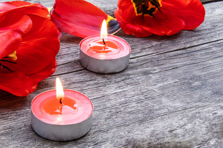 Two red candles are burning near the tulips and fallen petals. Red burning candle near the petals.