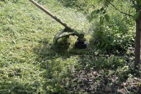 A man with a manual lawn mower mows the grass, mower closeup.