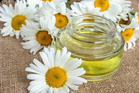 Aceite esencial de manzanilla en un frasco de vidrio de cerca sobre una mesa con margaritas. Foto de archivo