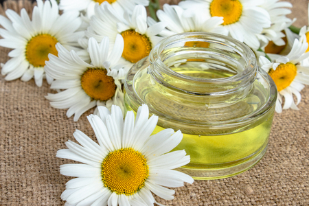 Chamomile essential oil in a glass jar close-up on a table with daisies. Imagens