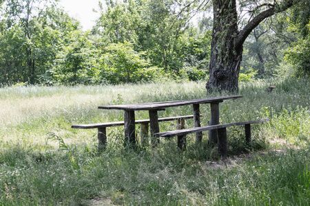 Wooden table and benches for a picnic on the grass of the park area in the shade. Camping at the table.