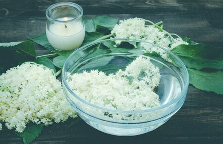 White flowers and leaves of elderberry lie on a bowl on a rustic wooden background. The flowers of Sambucus species are used to produce elderflower cordial, homemade sweet syrup or juice. Stock Photo