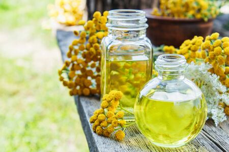 Tansy essential oil in a glass bottle on a wooden background near yellow tansy flowers. Tincture extract with medicinal tansy. Herbal medicine concept. spa