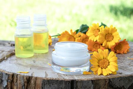Nourishing cream with calendula extract with fresh calendula flowers on a wooden background in nature. Medical Dermatology.