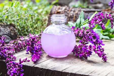 Essential oil in a glass bottle and fresh lavender flowers on a background of nature. Tincture or essential oil with lavender. Spa herbal medicine.