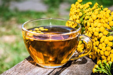 Herbal tea with tansy in a glass mug and yellow tansy flowers on the surface of a wooden table on a background of nature. Tansy Herbal tea. Healing herbs. Phytotea.