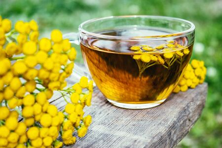 Herbal tea or tansy tincture in a mug and yellow tansy flowers on the surface of a wooden table against the background of nature. Healing herbs. Phytotea.