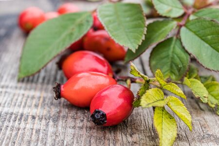 Red rose hips near green leaves lie on old wooden boards. Close-up.
