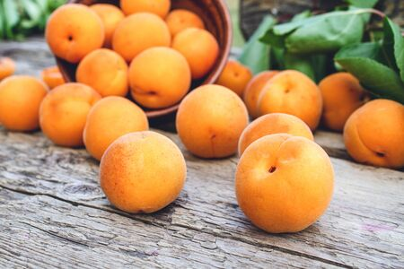 Delicious ripe apricots in a bowl next to green leaves on a wooden table. Close-up.