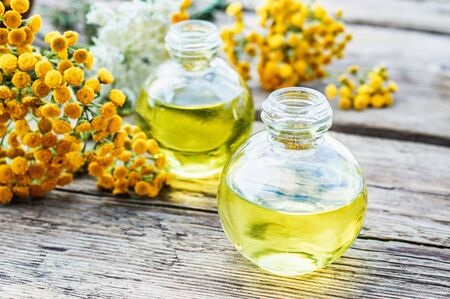 Yellow tansy grass and tansy oil in a glass bottle on a wooden background. Herbal medicine concept. spa